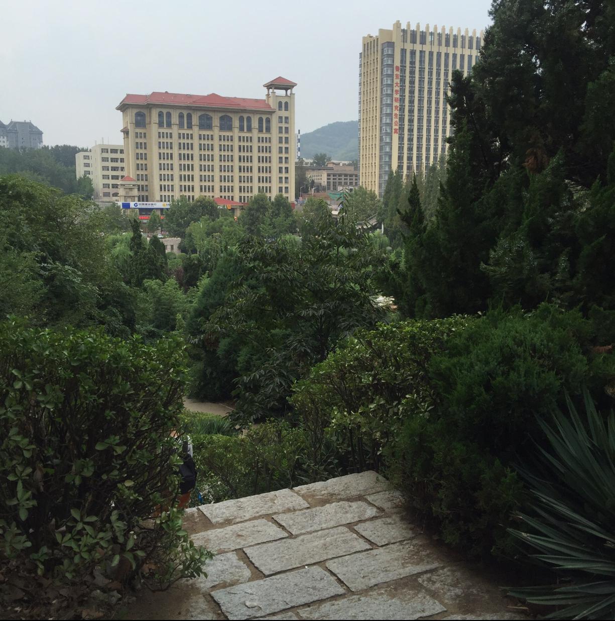 中国魯東大学最終章学生からの手紙