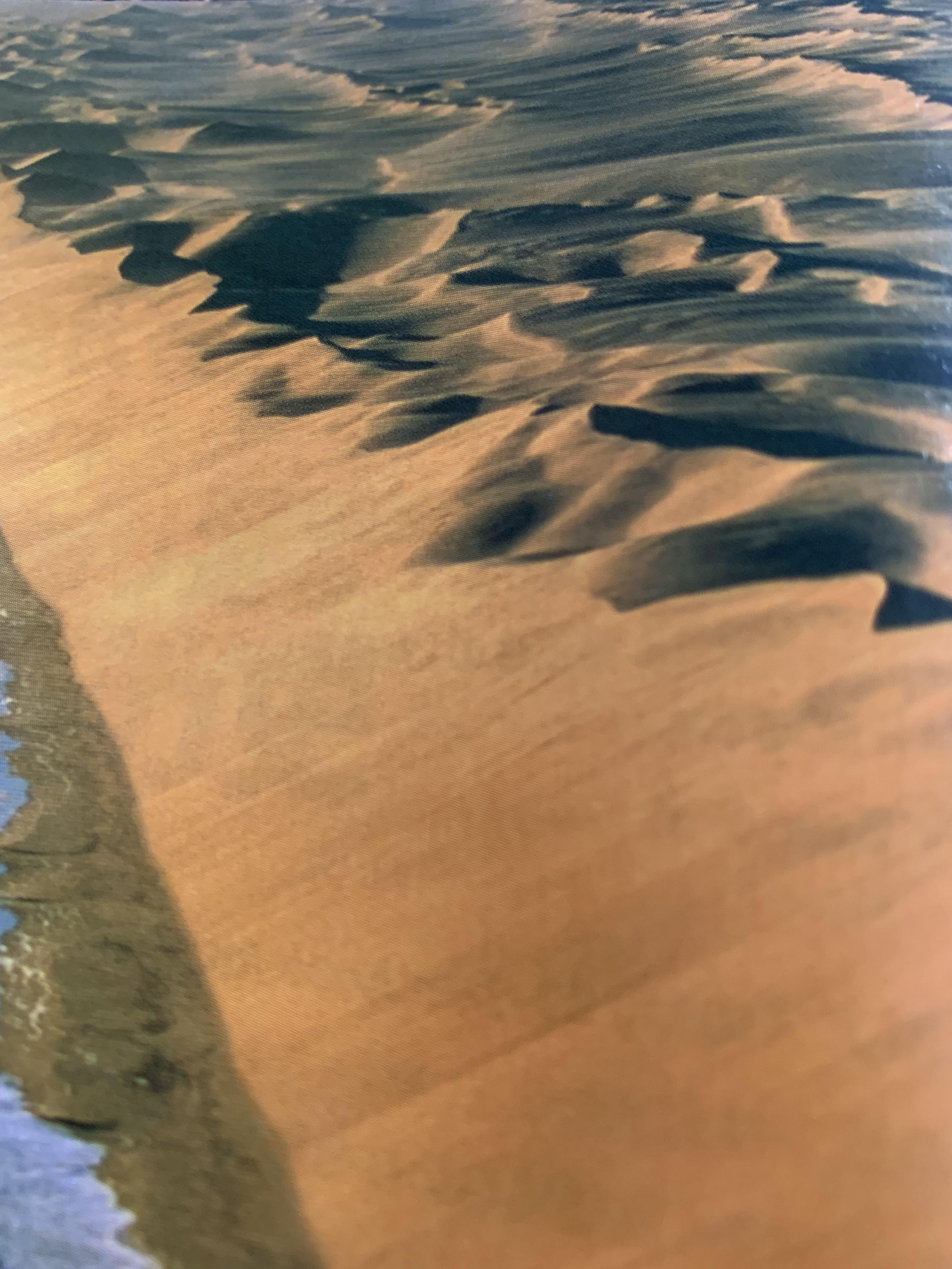 アフリカナミビアのナミブ砂漠黄金色の骸骨海岸の魅力